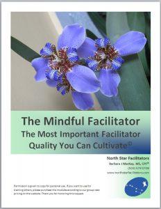 MindfulFacilitator