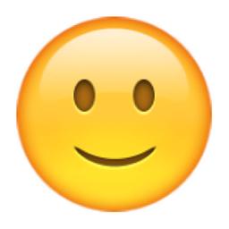 slightly-smiling-face